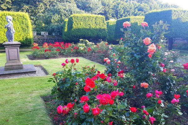 28 600x400 - Garden Visits
